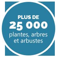 Plus de 25000 plantes, arbres et arbustes